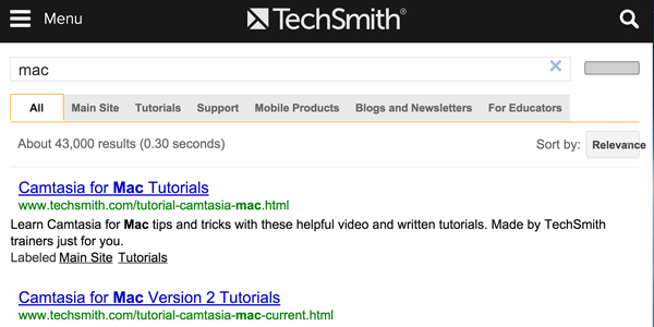 6.Add google site search