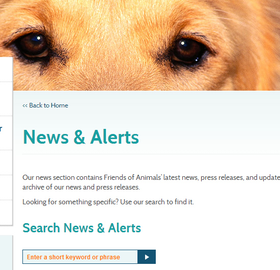 Friends-of-animals_news_alerts